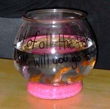 This may just look like a normal fishbowl, but Mikey Emig used these fish to ask a classmate to the winter formal.