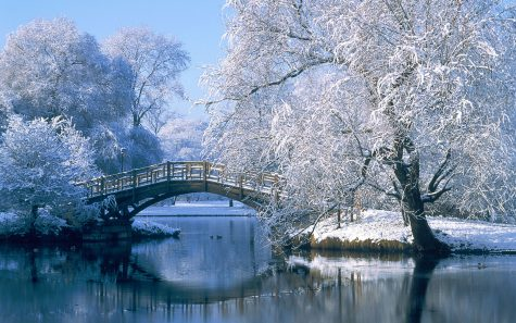 10 Things To Do Over Winter Break