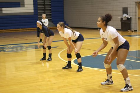 Volleyball Players Balance Sports and School