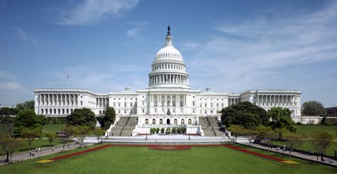 The Anatomy of a Congressional Campaign
