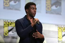 The Black Panther: A Positive Black Role Model