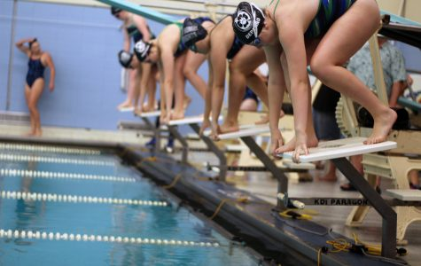 The Lady Knights Make Waves with Historic Wins